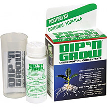 [해외]Dip N Grow Liquid Rooting Hormone, 2 Ounce
